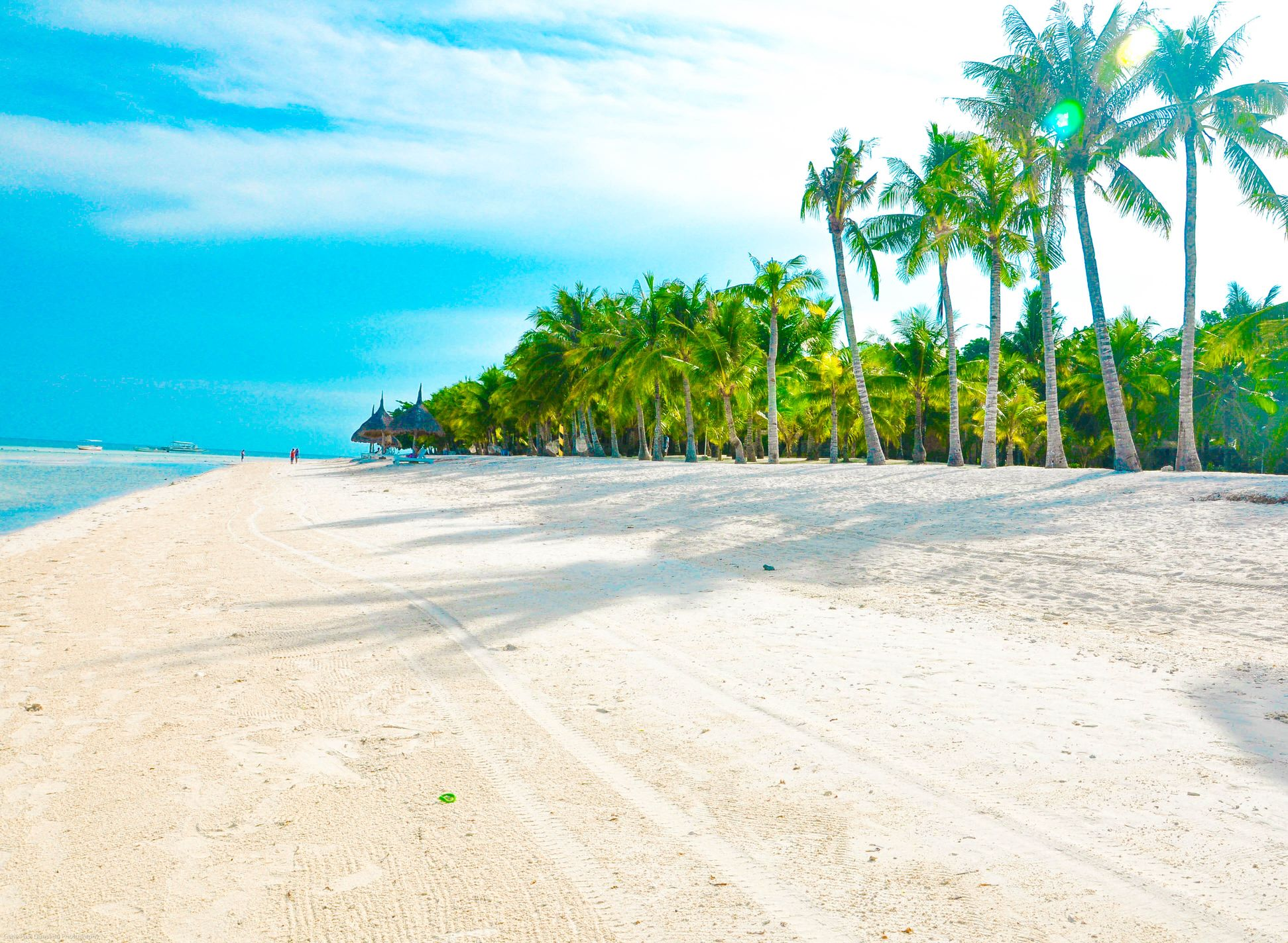White sand beach with coconut palm trees in Panglao, Philippines