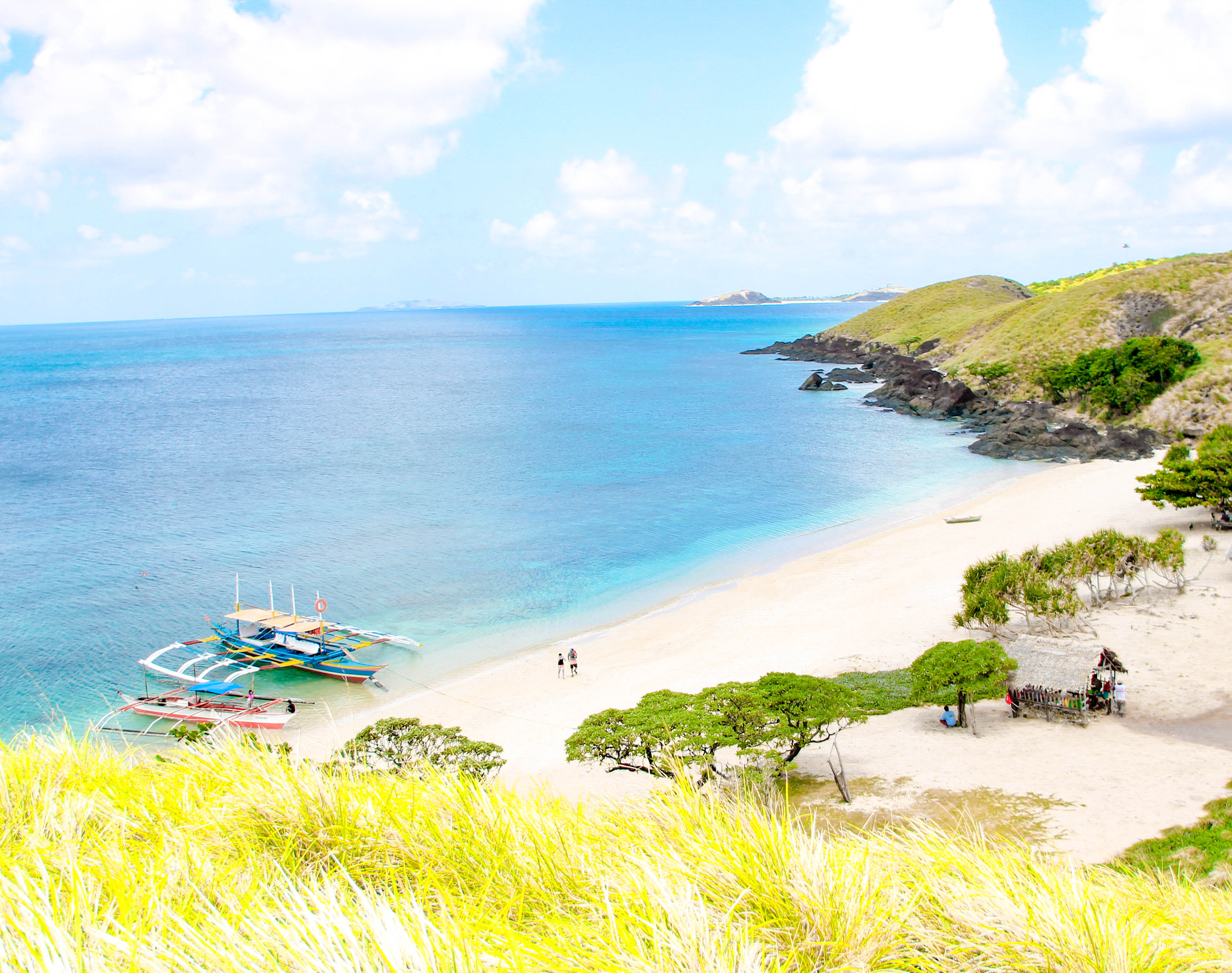 Grassy hill overlooking a white sand beach with several trees fronting the sea in Calaguas, Philippines