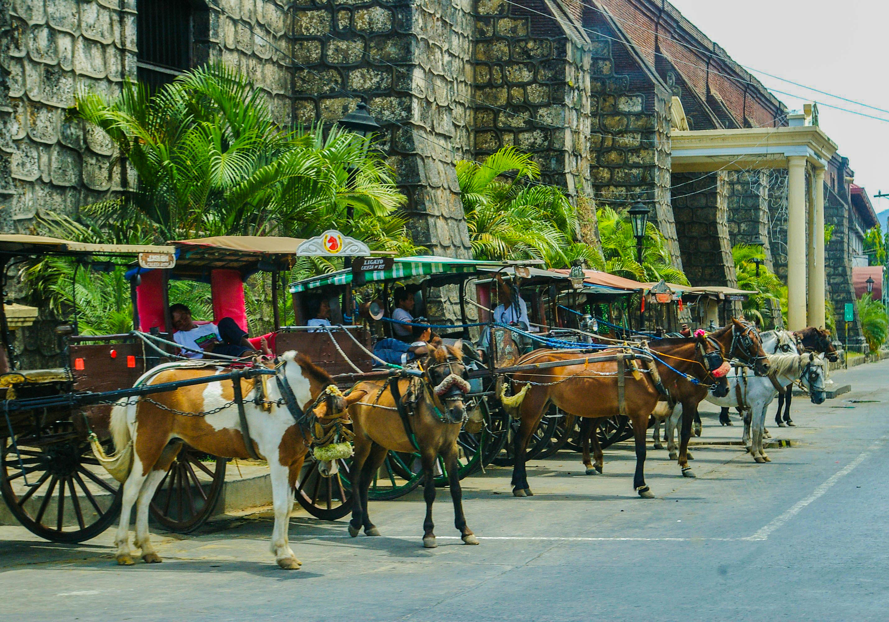 A line of calesas (horse-drawn carriages) wait while their drivers rest in Vigan City, one of the most amazing places to visit in the Philippines