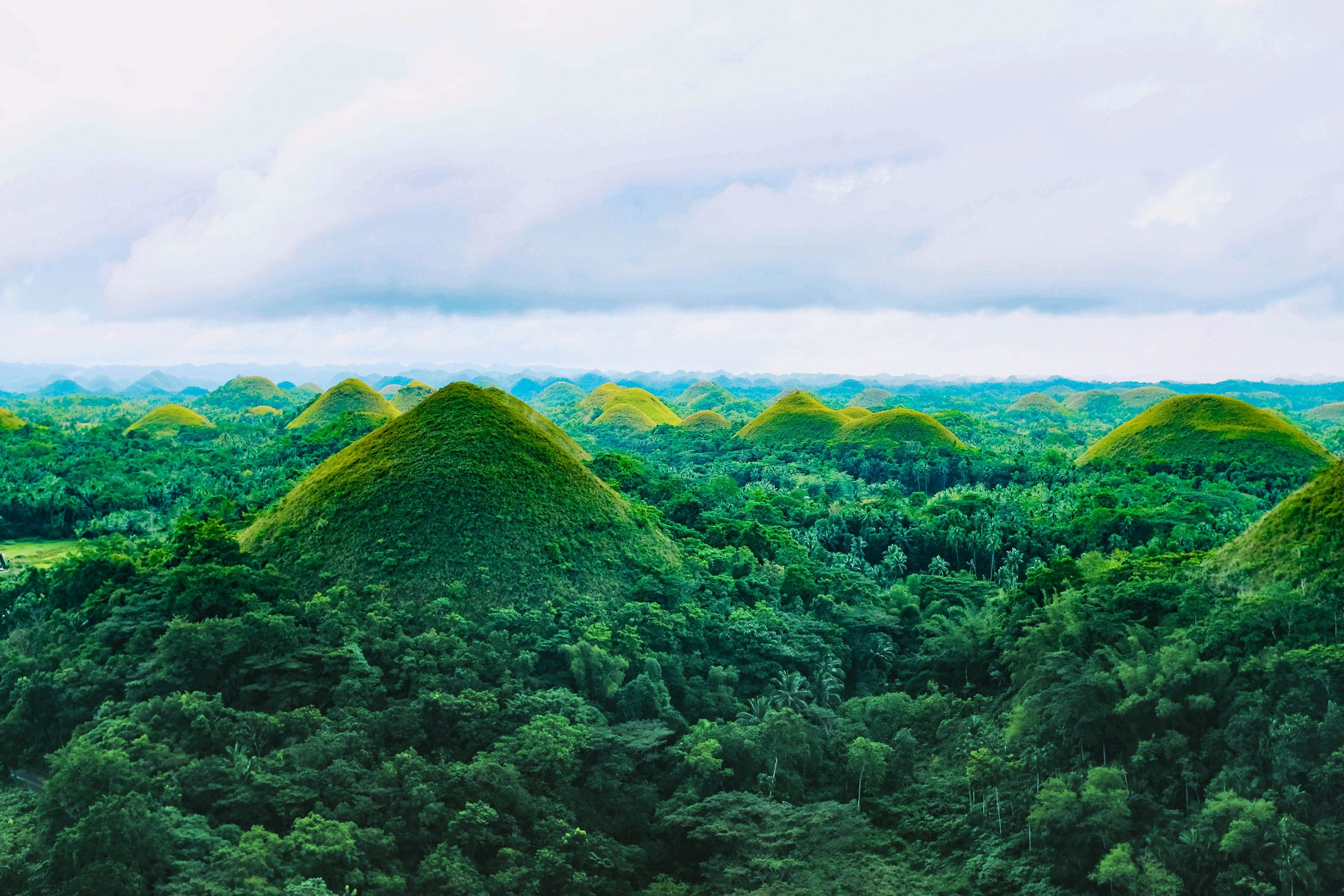 Numerous green hills rising above green forests in Bohol, Philippines