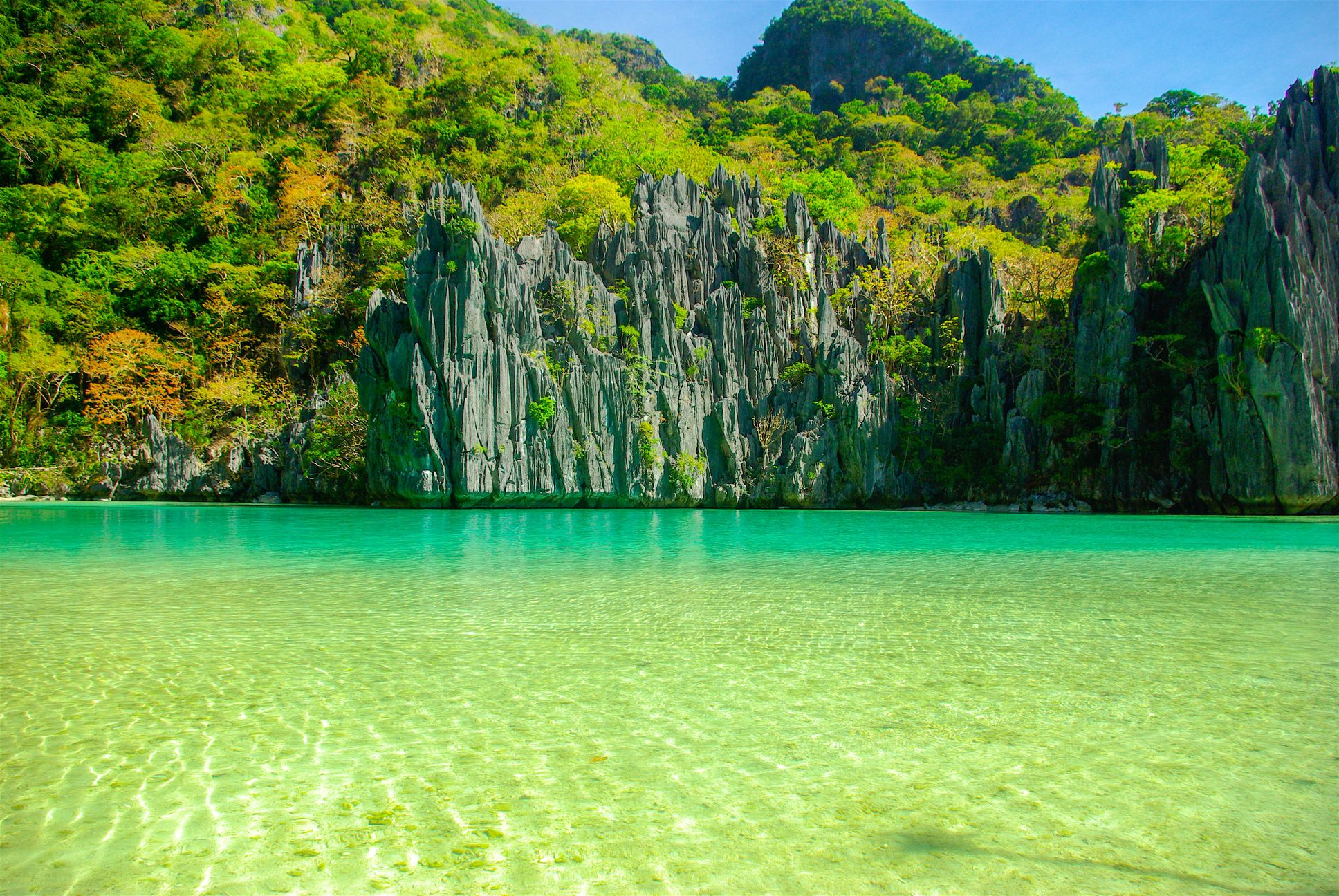Limestone cliffs overhung with vegetation rise above turquoise waters in El Nido, Palawan, Philippines
