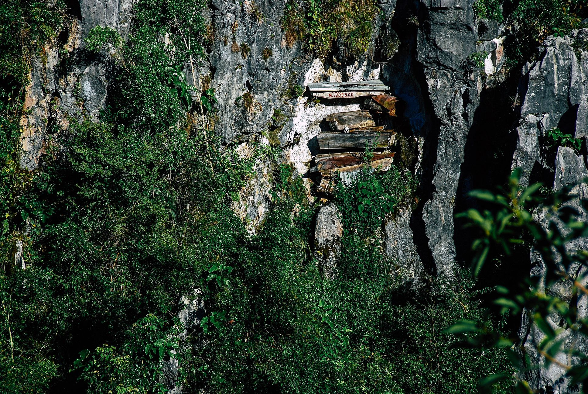 Pinewood coffins strapped on cliffsides in Sagada, Philippines