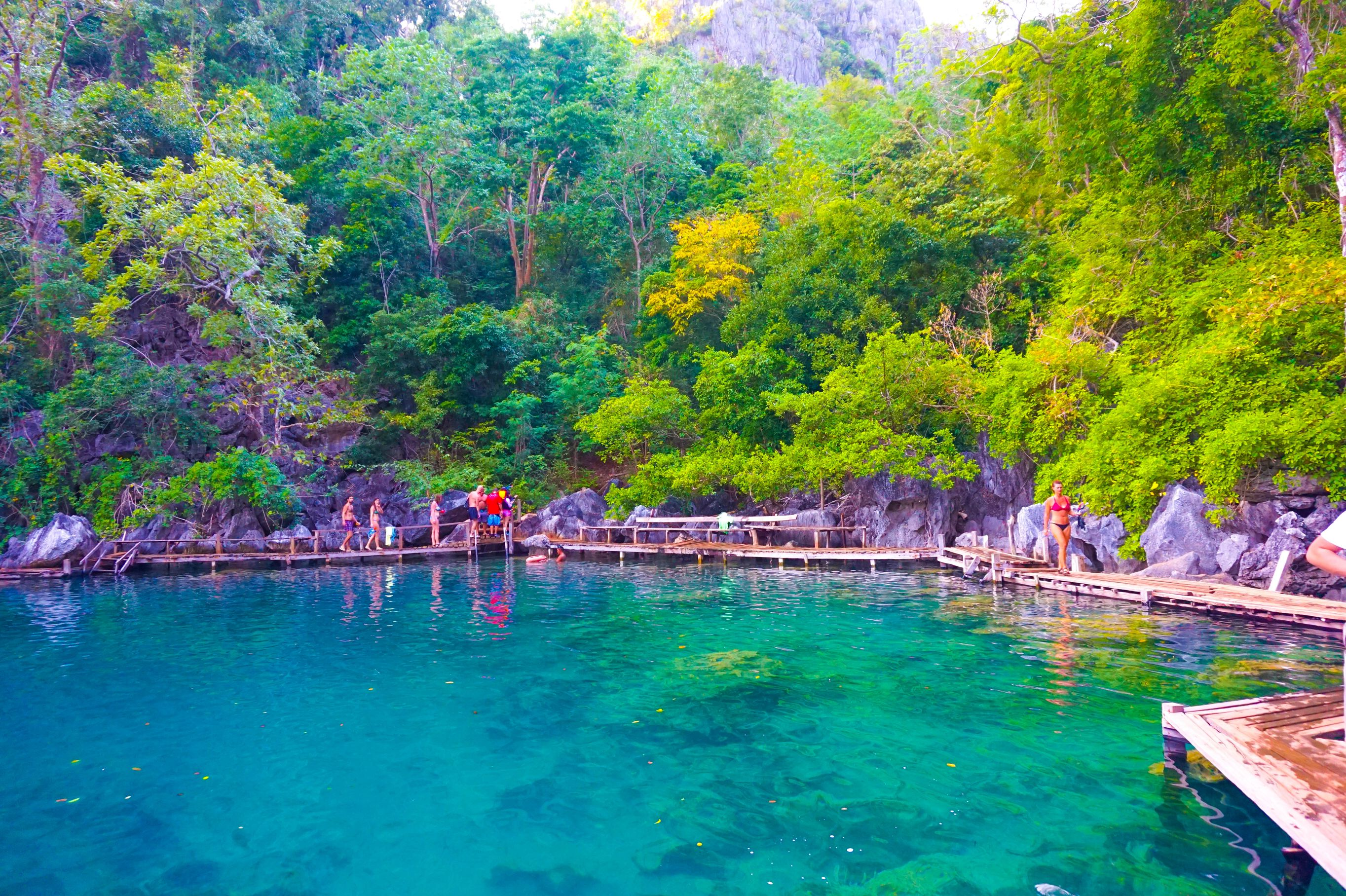 Crystalline lake surrounded by limestone cliffs overhung with trees and other vegetation in Coron, one of the most amazing places to visit in the Philippines