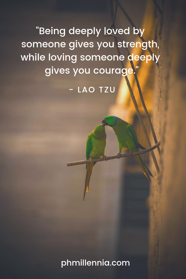A quote on love by Lao Tzu on a background of a pair of green parrots affectionately touching heads.