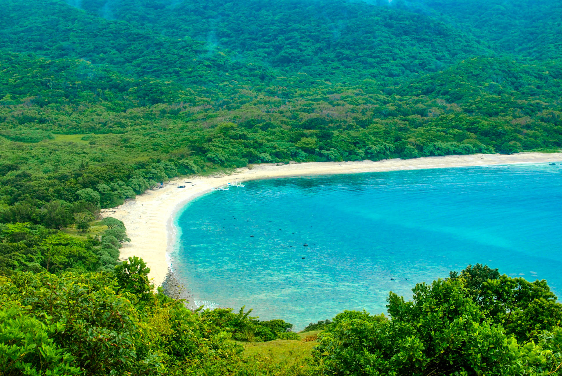 View of a white sand beach fronting turquoise waters and backed by forests and mountains in Palaui, Philippines