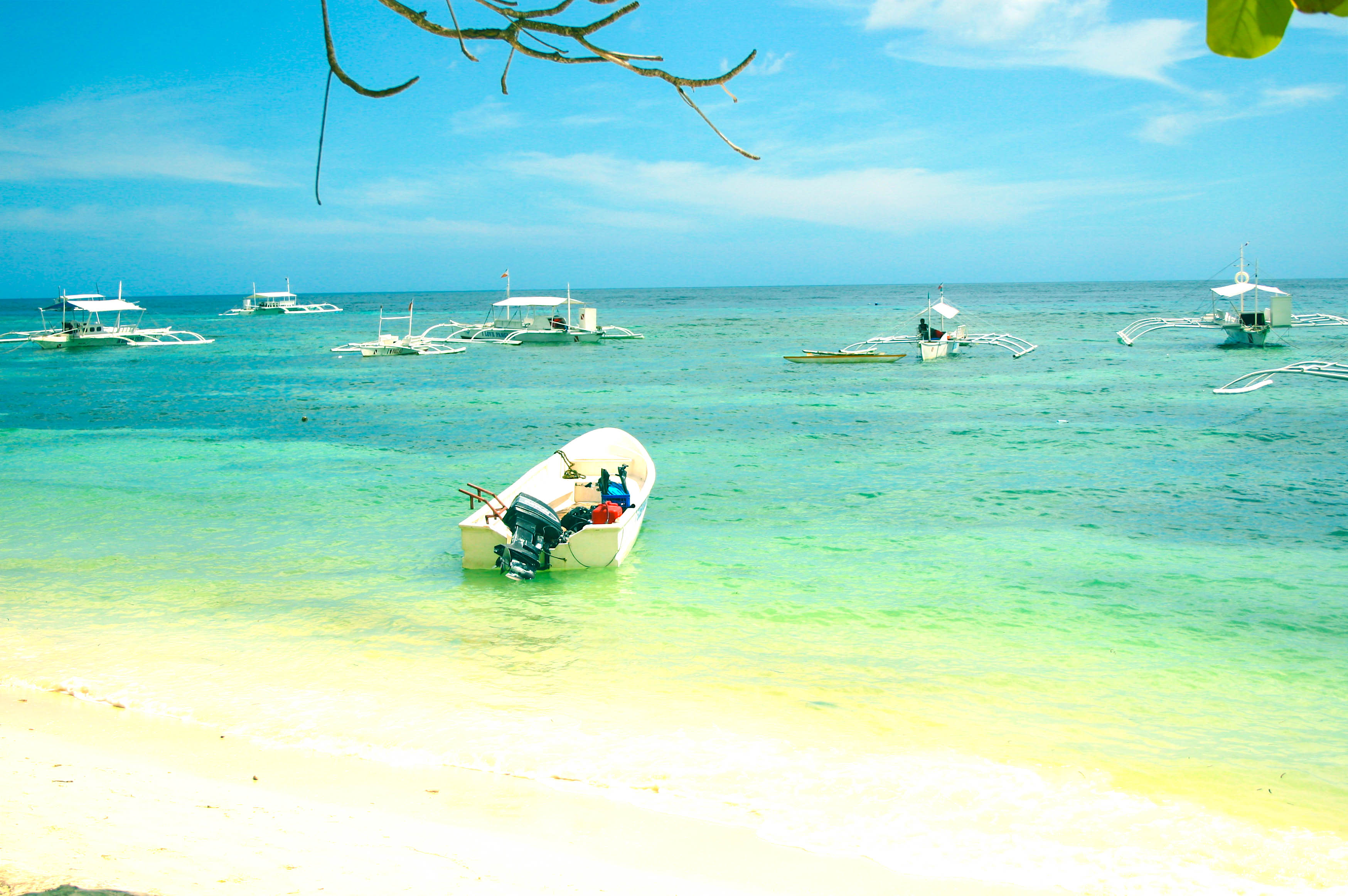 Outrigger boats moored close to white sandy shore in Panglao, Philippines