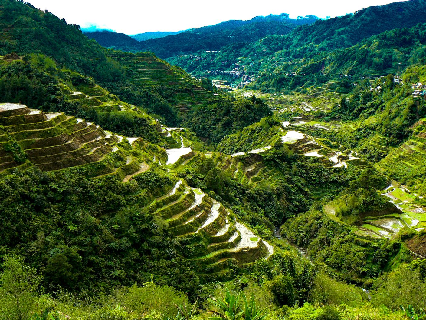 View of terraced paddy fields carved along mountainsides in Ifugao, Philippines