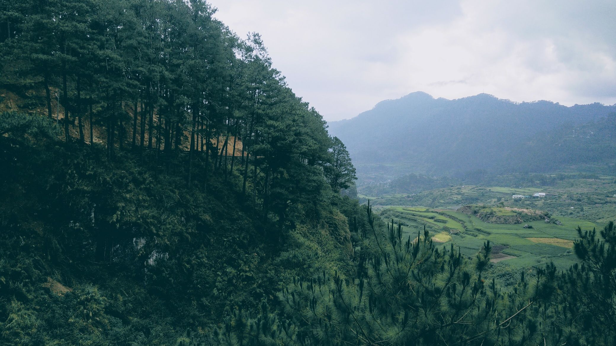 Pine trees on a hill, beyond which lies a town within a valley in Sagada, one of the most amazing places to visit in the Philippines