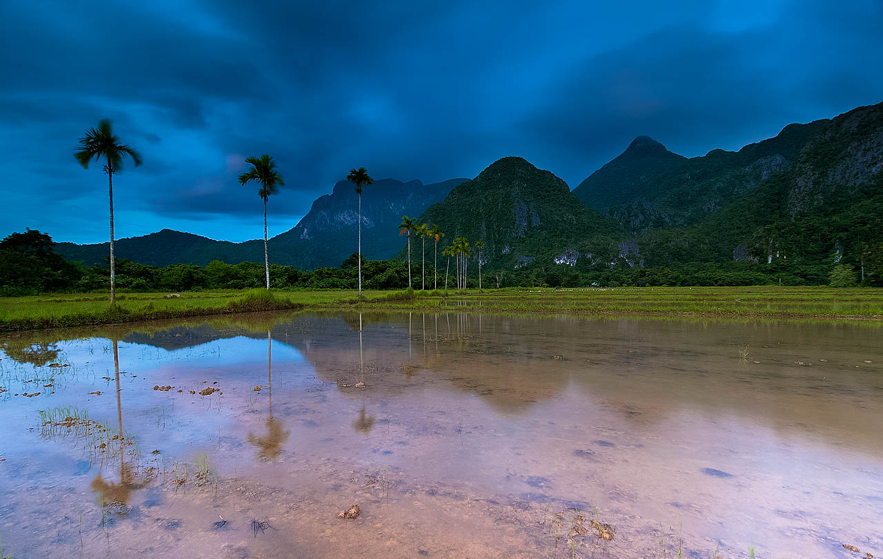 Reflections of oconut palms on a lake, beyond which rises towering mountains beneath a dark sky in Puerto Princesa, Philippines