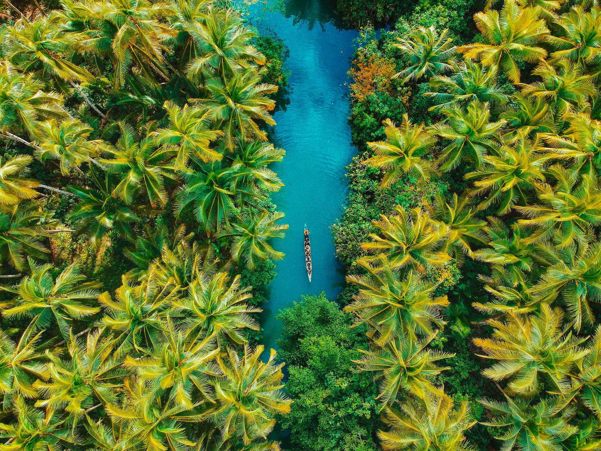 Aerial view of a boat sailing through a lagoon surrounded by coconut palm forests in Siargao, Philippines