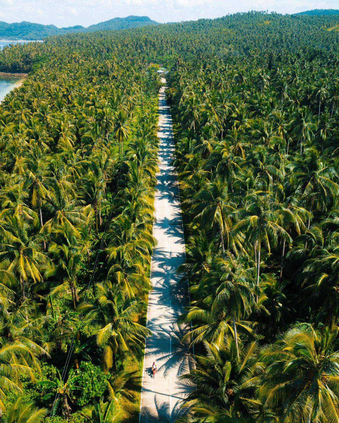 Straight concrete road running through a vast coconut palm forest in Siargao, Philippines