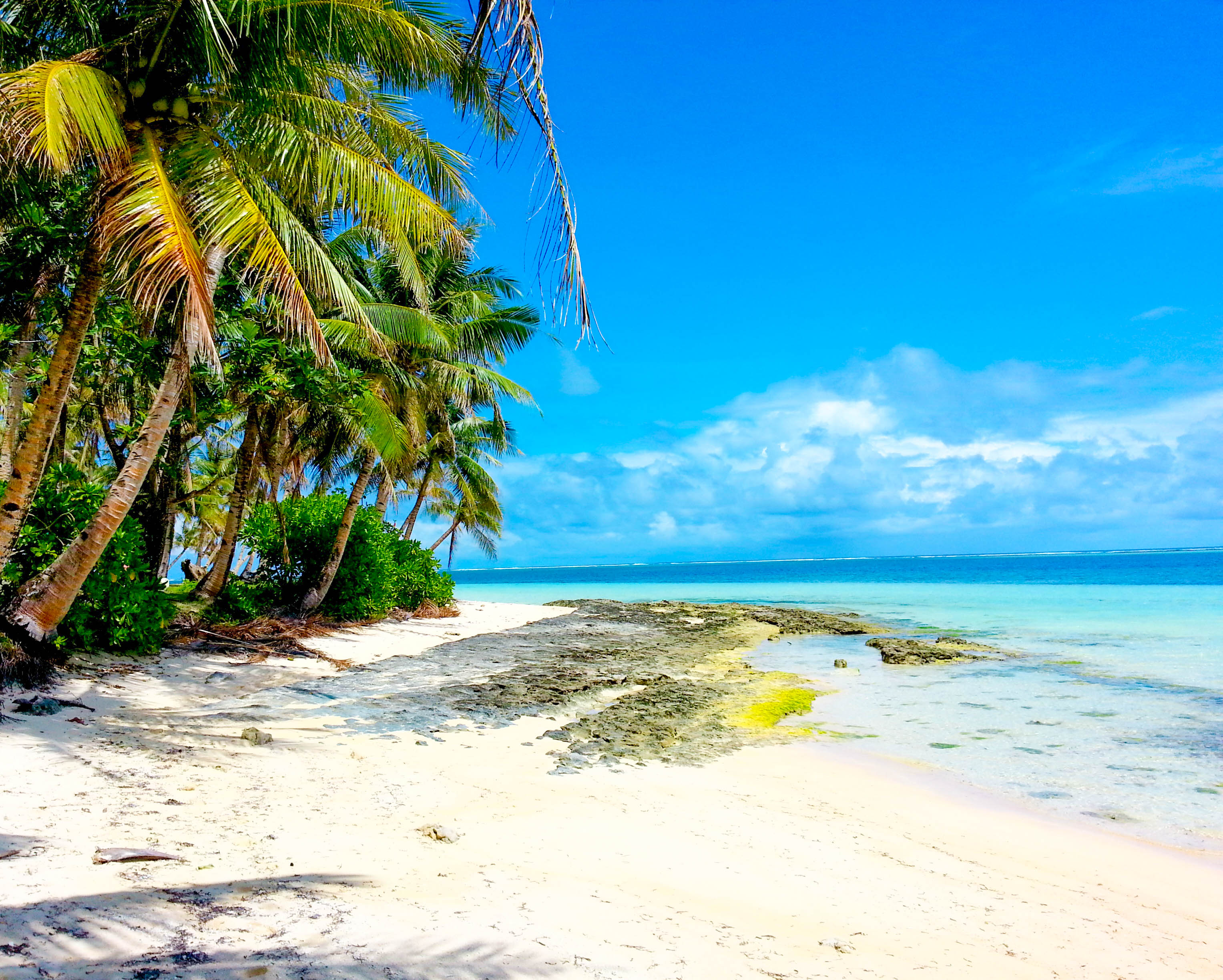 White sand beach with coconut palms, clear waters, and blue skies in Siargao, Philippines