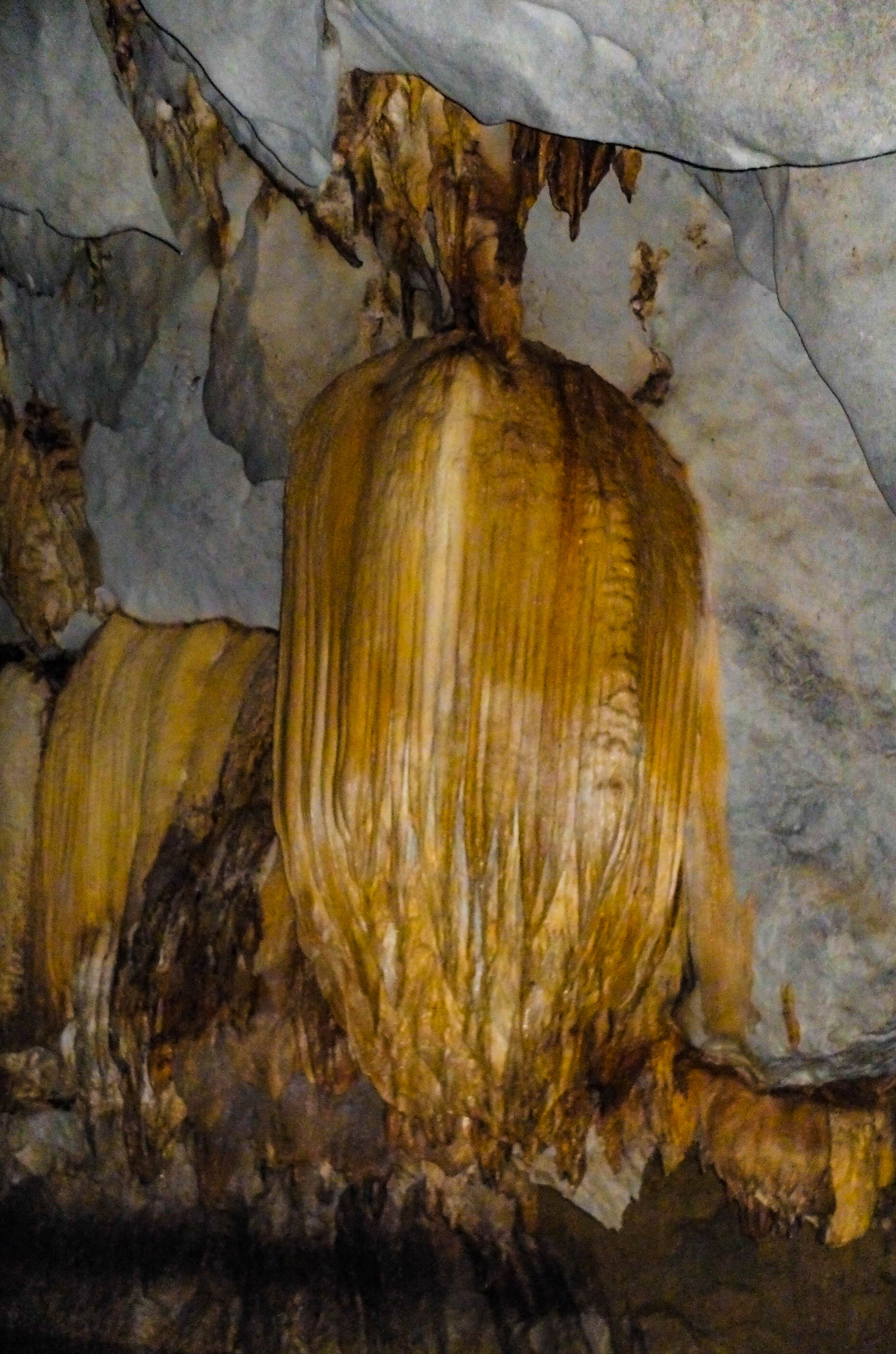 Stalactite hanging from the ceiling of an underground cave in Puerto Princesa Underground River, one of the most amazing places to visit in the Philippines