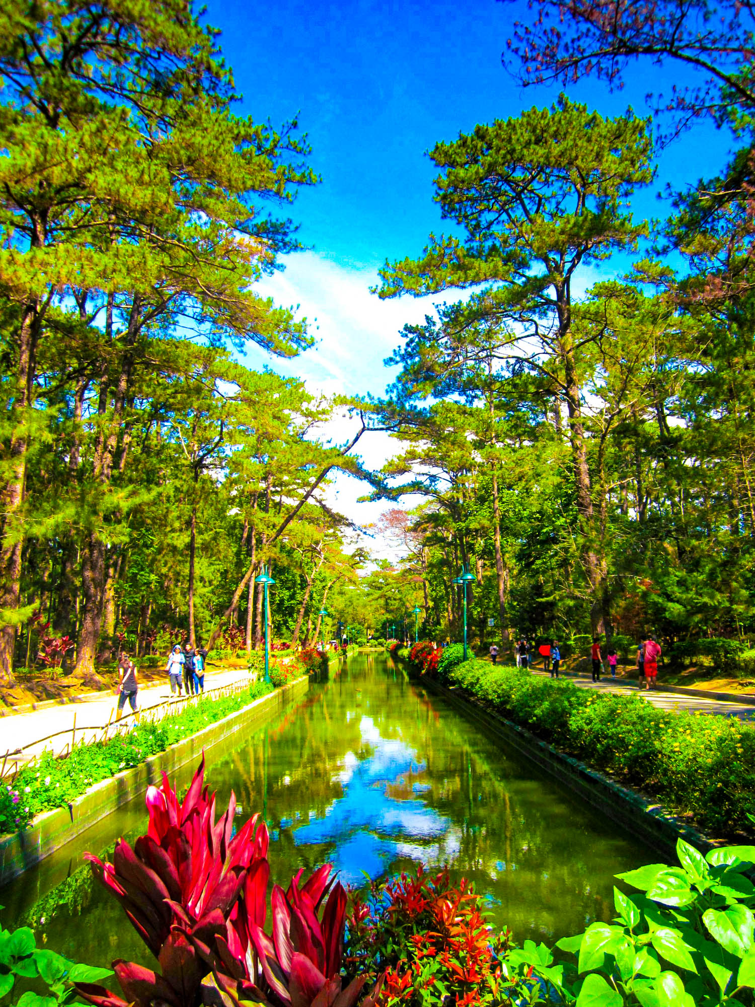 View of a fountain or pool surrounded by hedges, walkways, and further out on the sides, by pine trees in Wright Park, Baguio City