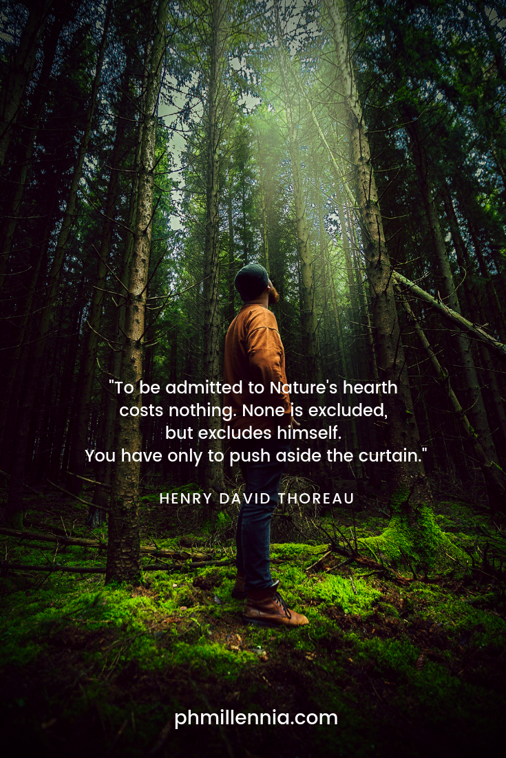 A quote on nature by Henry David Thoreau on a background of a man looking upwards and standing on a forest glade surrounded by tall trees