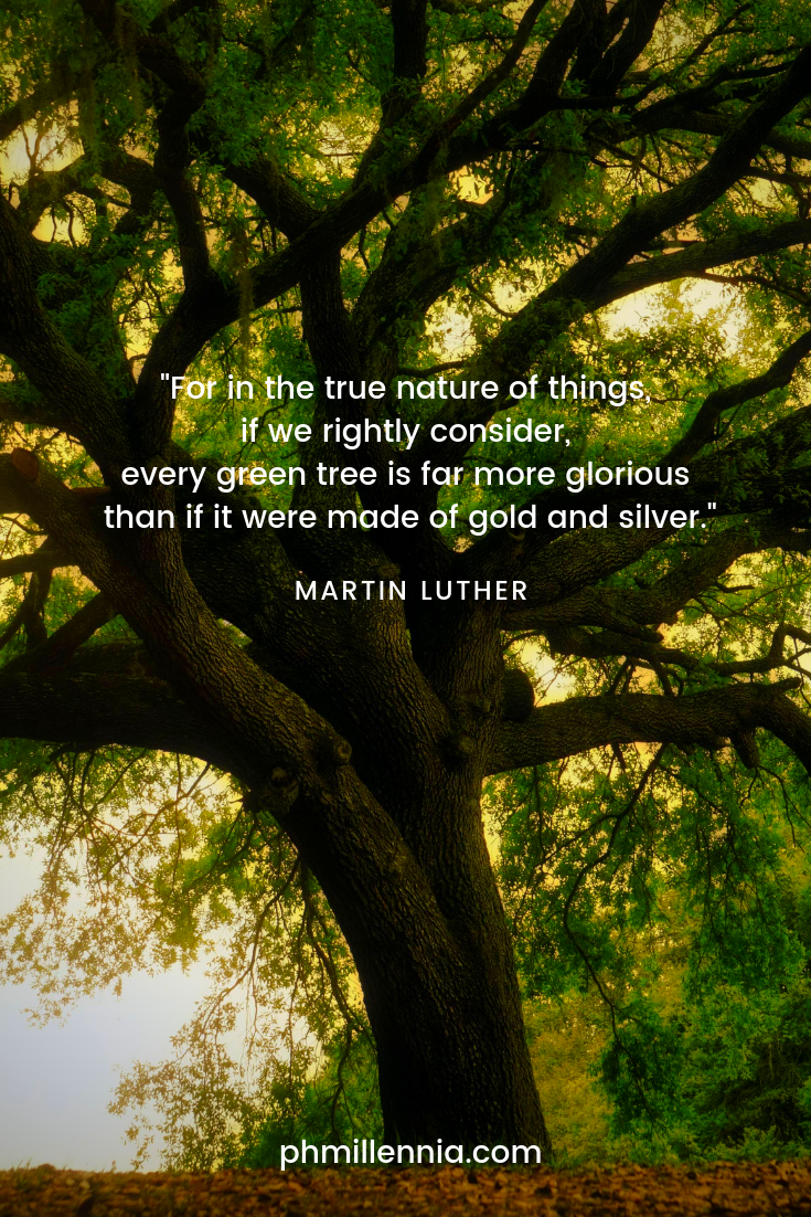 A quote on nature by Martin Luther on a background of a tree with many splayed branches and green leaves