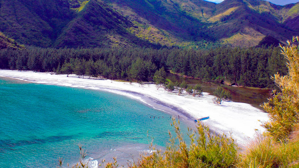 White and grayish sandy beach bounded by pine forests and mountains on one side, and the turquoise sea on the other