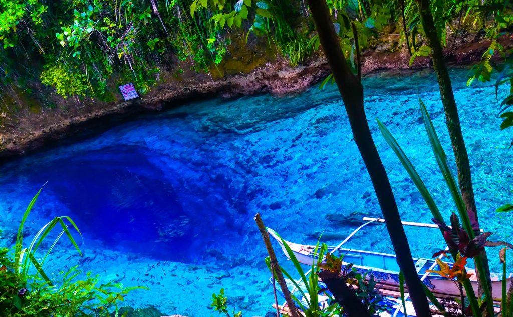 Clear body of jade-, sapphire-, and emerald-hued water surrounded by banks overhung with vegetation