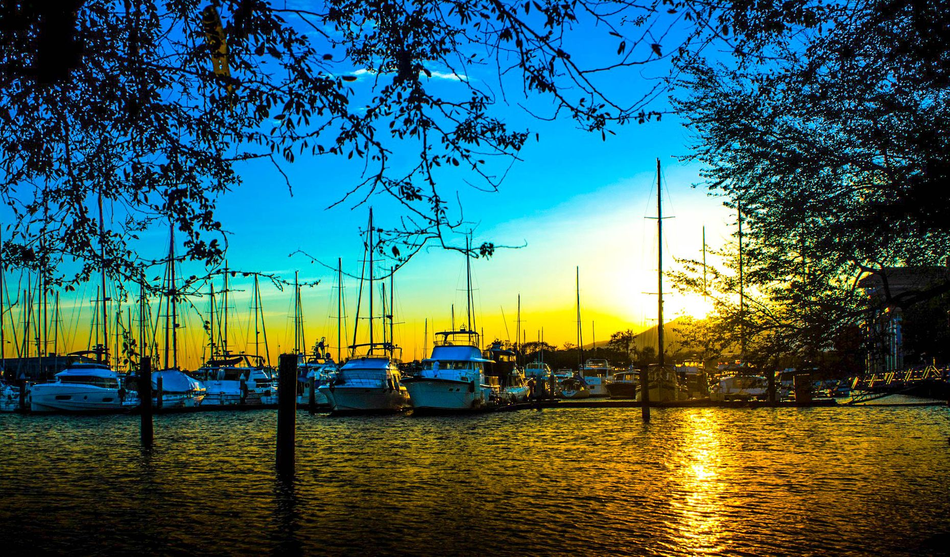 Row of yachts moored on a bay in Subic, one of the best places to visit in the Philippines