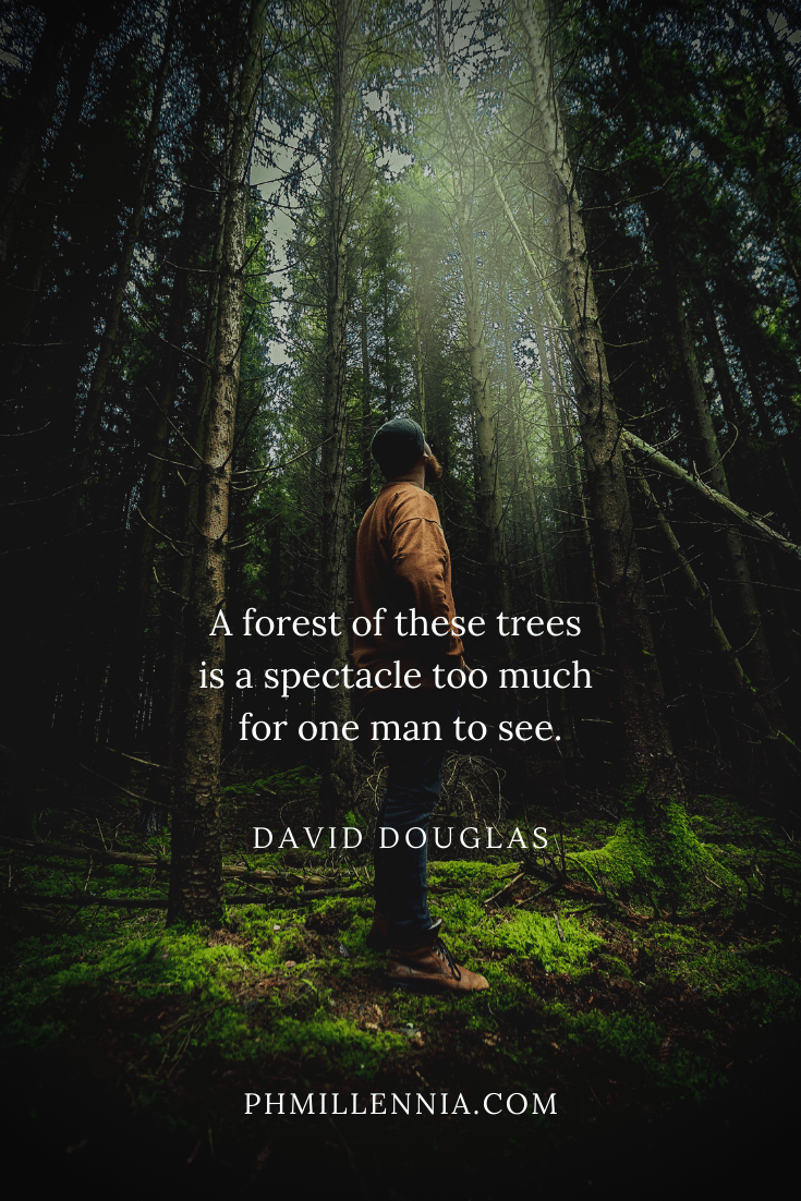 A quote by David Douglas concerning woods on a background of a man standing in a forest surrounded by tall trees