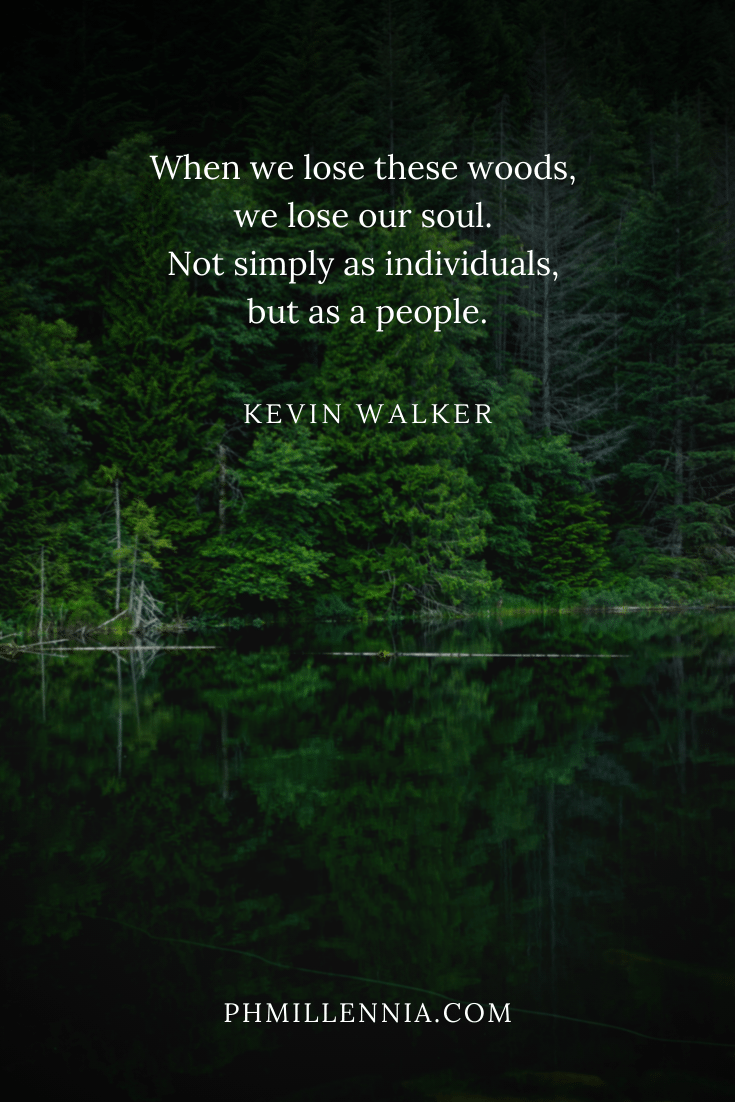 A quote on woods and forests on a background of a green trees mirrored on clear, dark waters