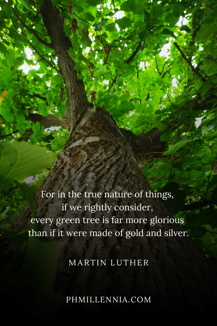 A quote by Martin Luther on trees on a background of a brown tree with green leaves