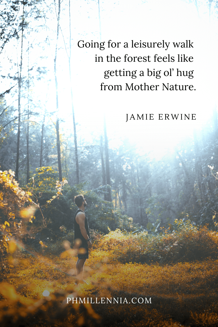 One of Jamie Erwine's quotes on woods and forests on a background of a man standing in the middle of a forest