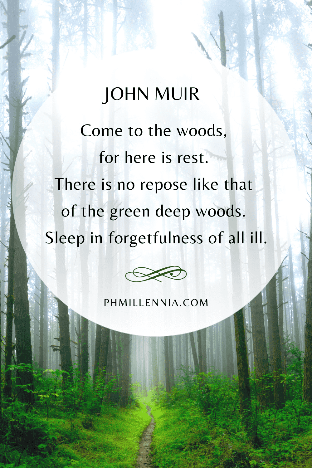 20 Wonderful and Inspiring Quotes on Woods and Forests   phmillennia