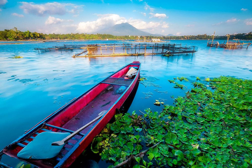 Boat lies floating beside a green mass of water plants on the surface of a wide body of water known as Sampaloc Lake, one of the most scenic lakes in the Philippines