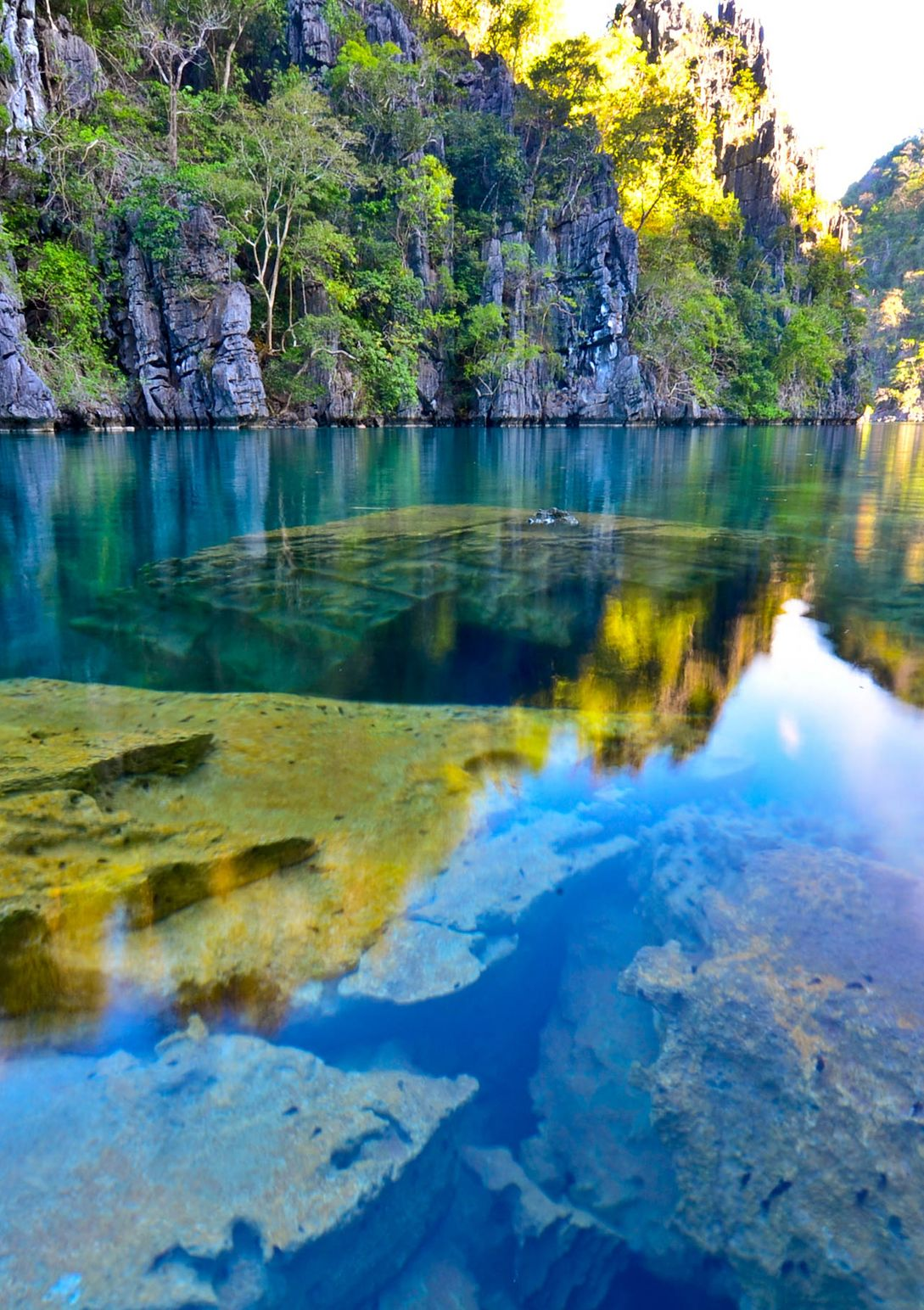 Limestone cliffs overhung with vegetation reflected on a body of crystal clear water