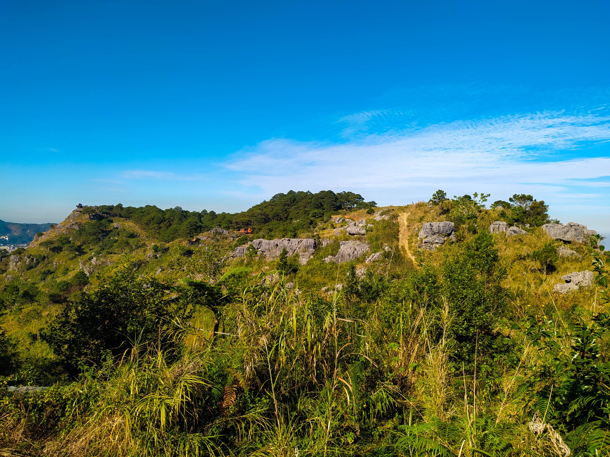 Mountain summit clad with vegetation and limestone rocks beneath a blue sky