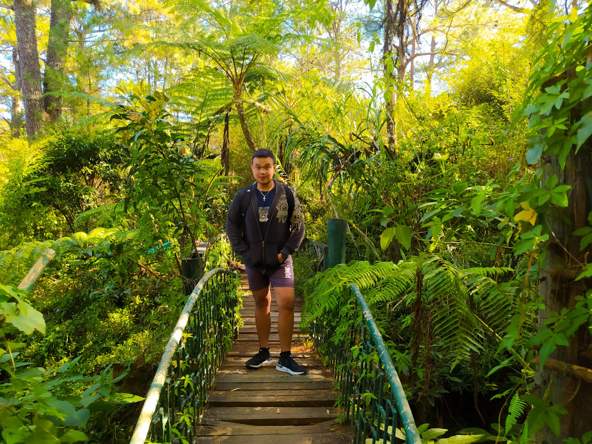 Man standing on a bridge surrounded by thick vegetation