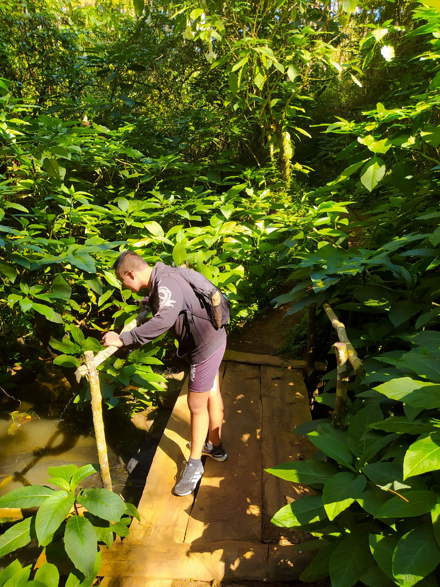 Man standing on a makeshift wooden bridge spanning a murky brook surrounded by thick and dense vegetation somewhere along the Eco-Trail
