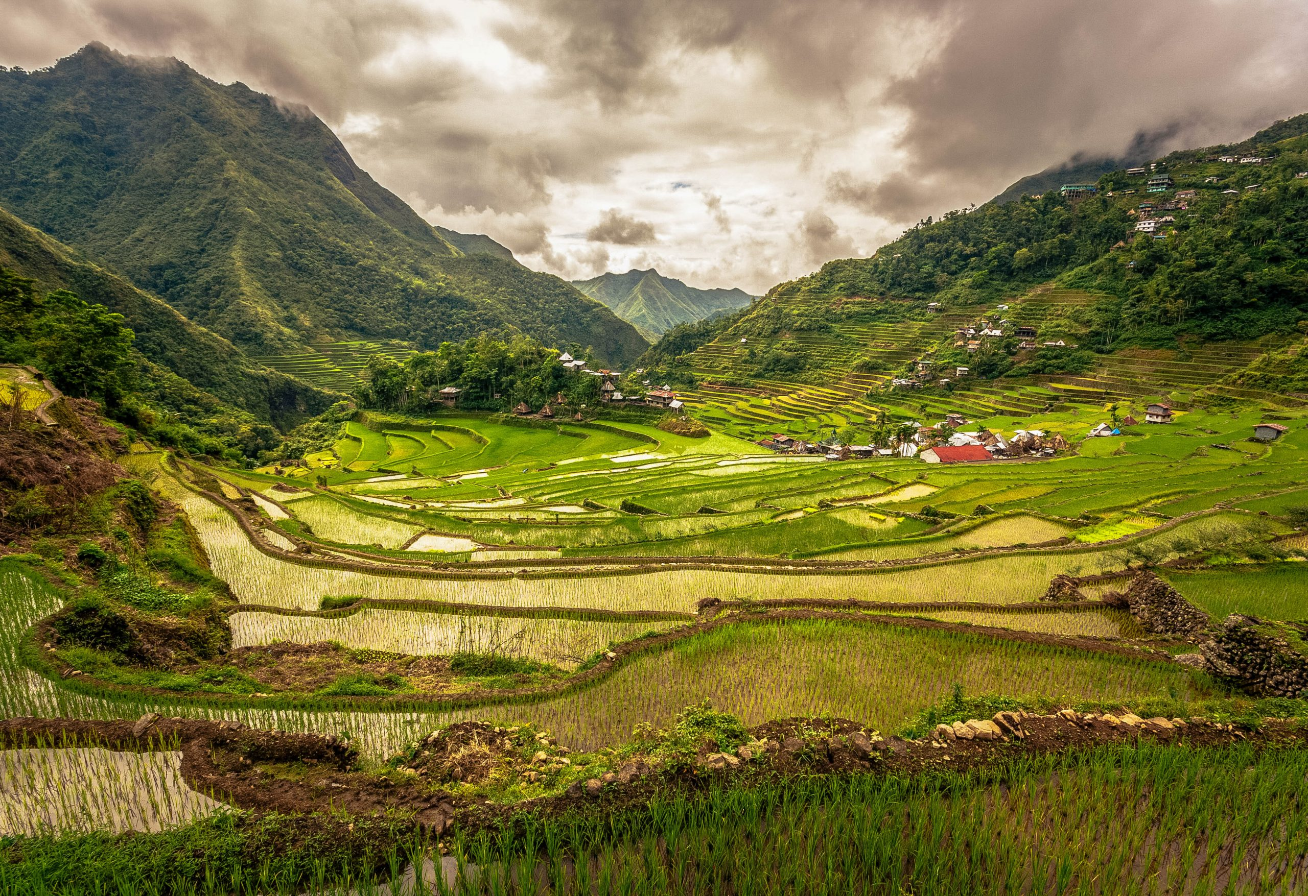 A view of the lofty, green terraced paddy fields carved upon a valley walled by mountains. This is the Batad Rice Terraces, one of the five clusters of rice terraces of Ifugao inscribed as one of the UNESCO World Heritage Sites in the Philippines