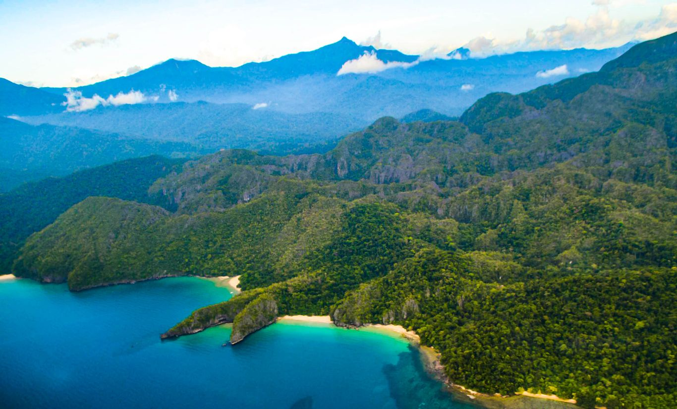 An aerial view of forested and mountainous landscape bordering the turquoise and azure waters of the sea