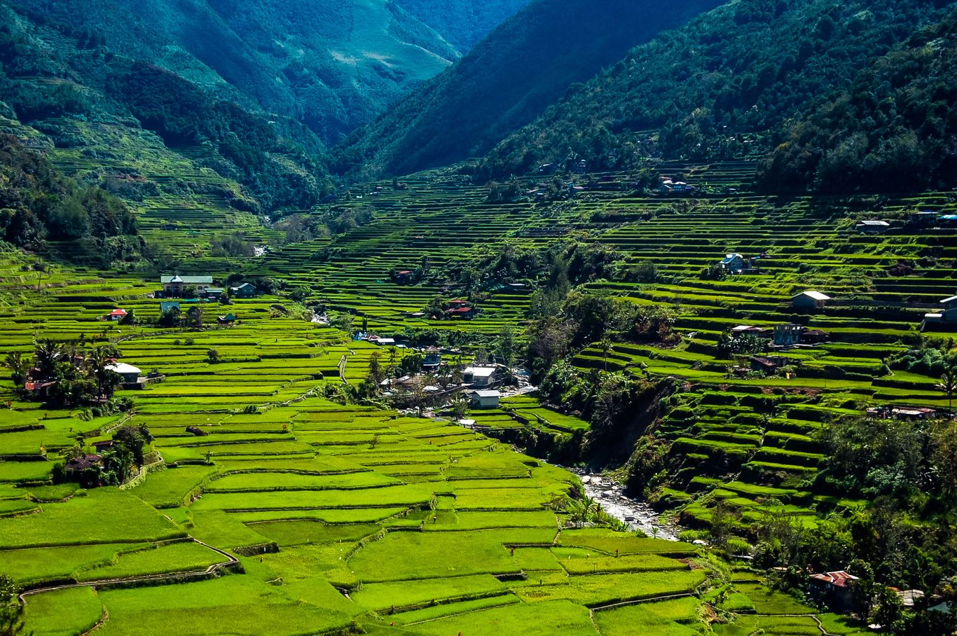 Small villages lie within wide rice terraces carved at the feet of forested mountains, through which a river flows