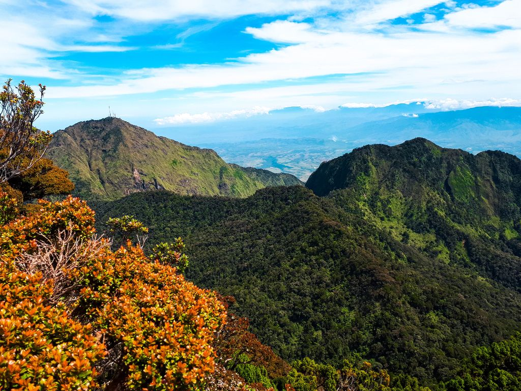 View of forested slopes and summits of a mountain range, specifically Kitanglad Mountain Range, one of the mountain ranges of the Philippines