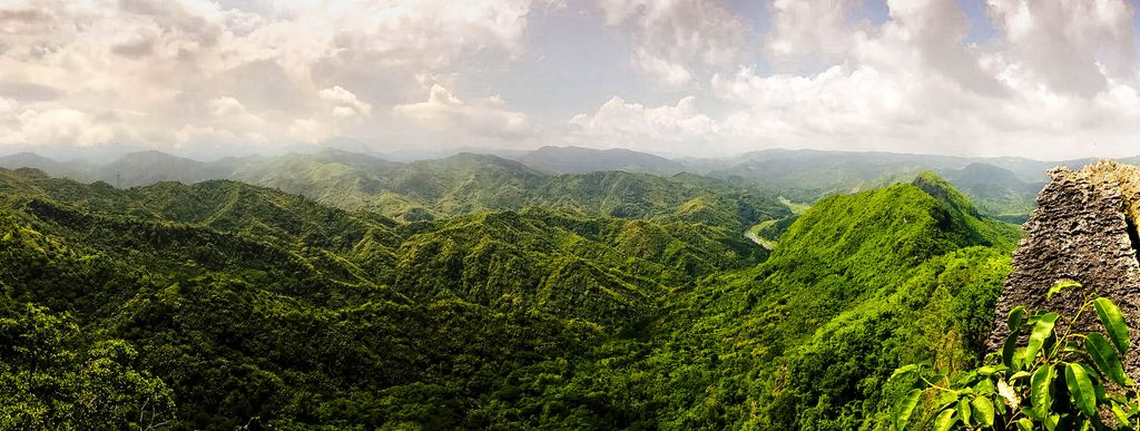 The forested peaks and ridges of e vast mountain range, specifically the Sierra Madre, the longest of all mountain ranges of the Philippines