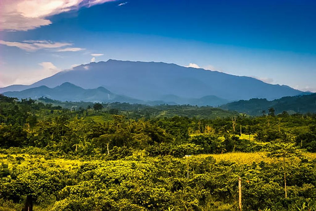 A far away mountain range rising above forests and vegetated lands