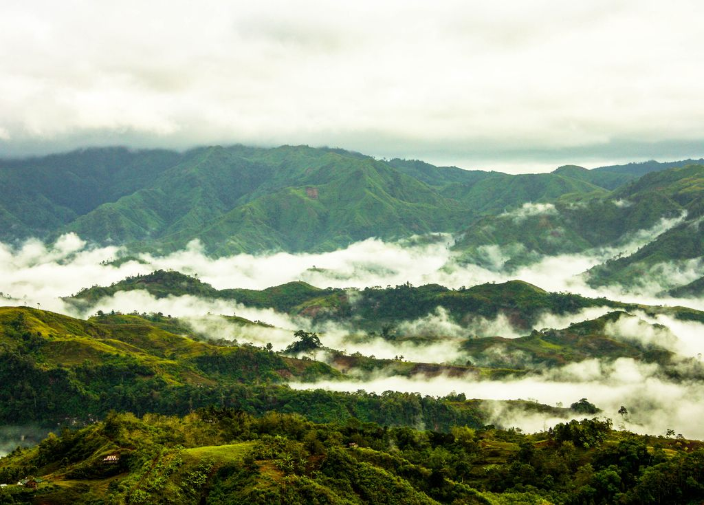 Mist covers parts of a densely forested mountain range