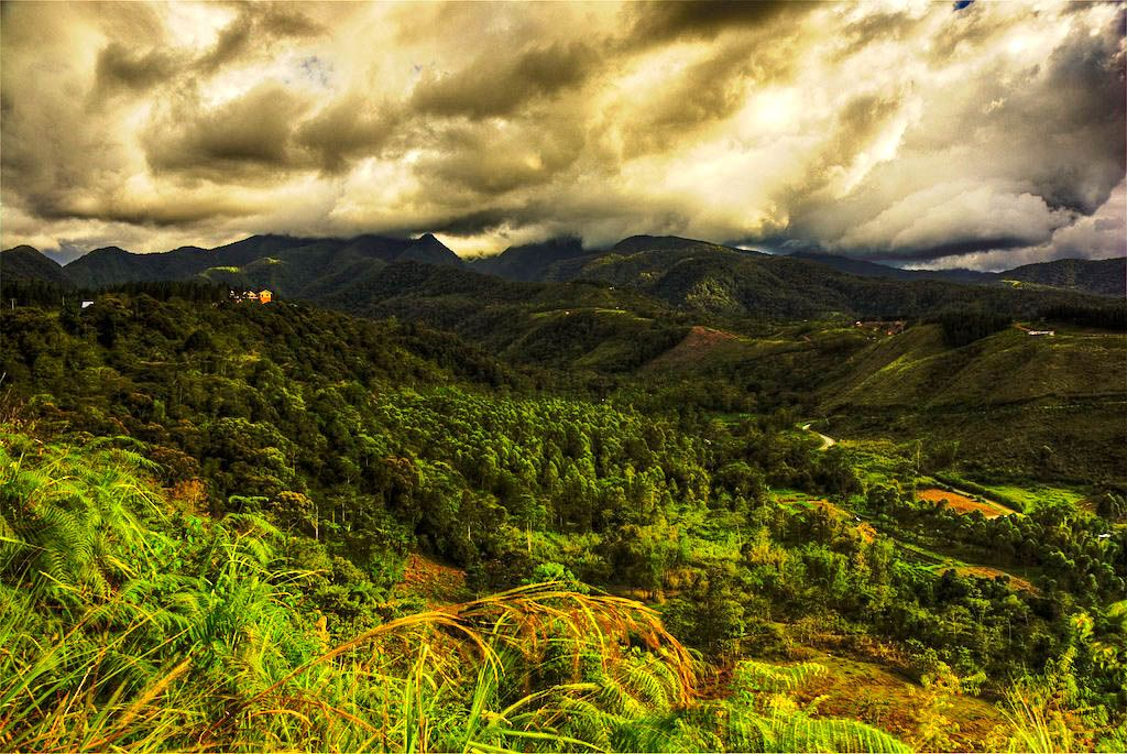 Forested hills and mountains beneath a dark, cloudy sky