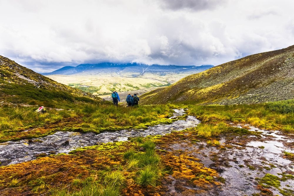 A group of hikers move across a vegetated field, through which a stream courses through in Norway, home of friluftsliv
