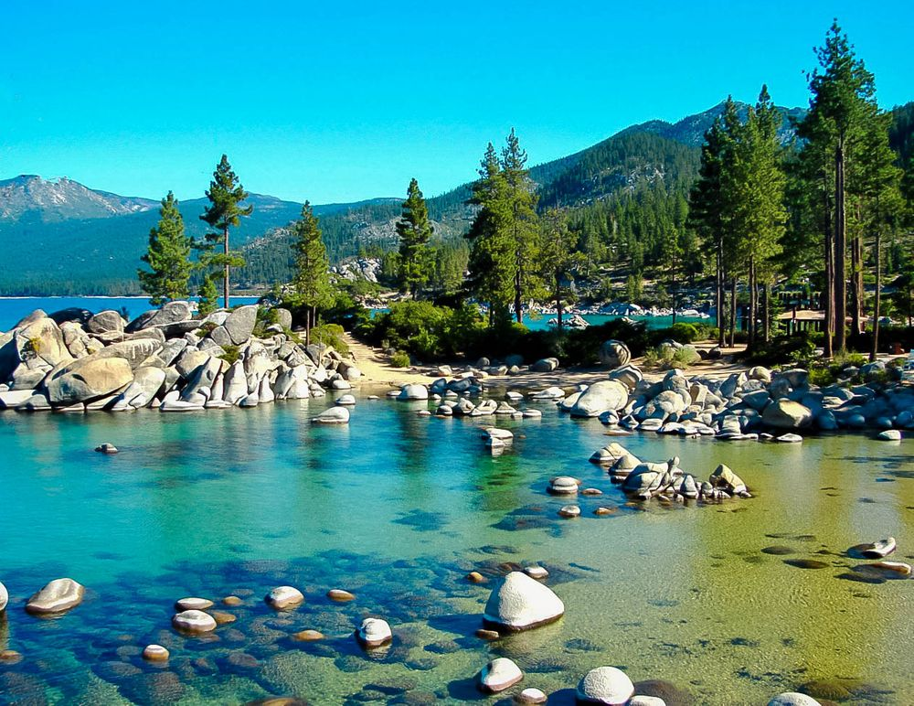 Pine trees stand on the rocky shores of a lake with turquoise and blue waters