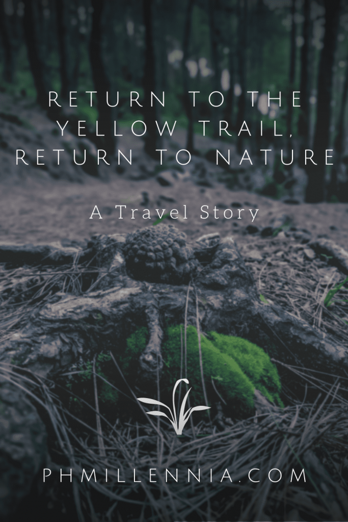A Pinterest Pin for the article entitled 'Return to the Yellow Trail, Return to Nature' on phmillennia