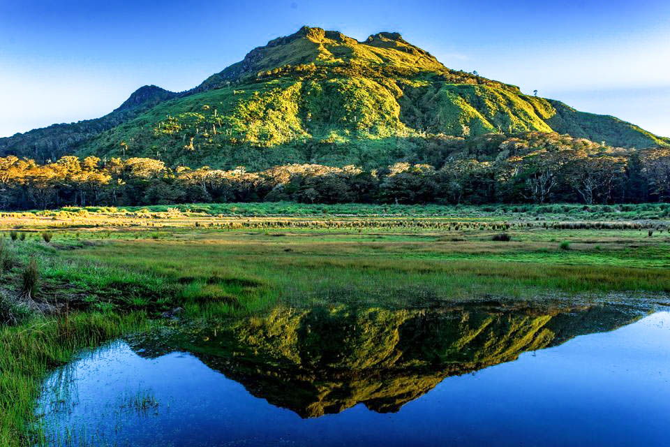 A green mountain peak (that of Mount Apo, the highest mountain in the Philippines) rising above a green plain, reflected clearly upon a clear lake