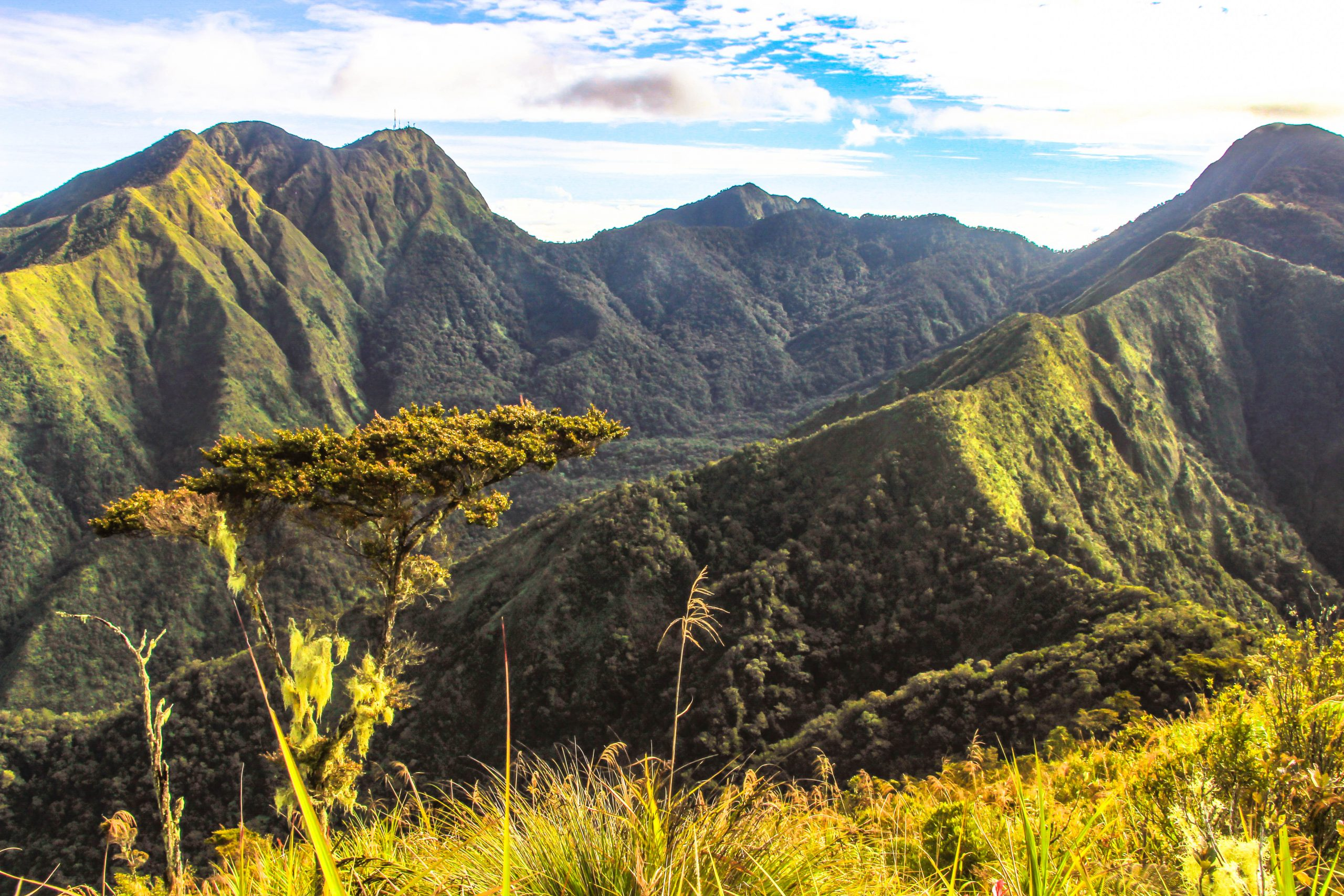 A mountain range with steep green slopes and jagged peaks (indeed the Kitanglad Mountain Range, which encompasses several of the tallest mountains in the Philippines)