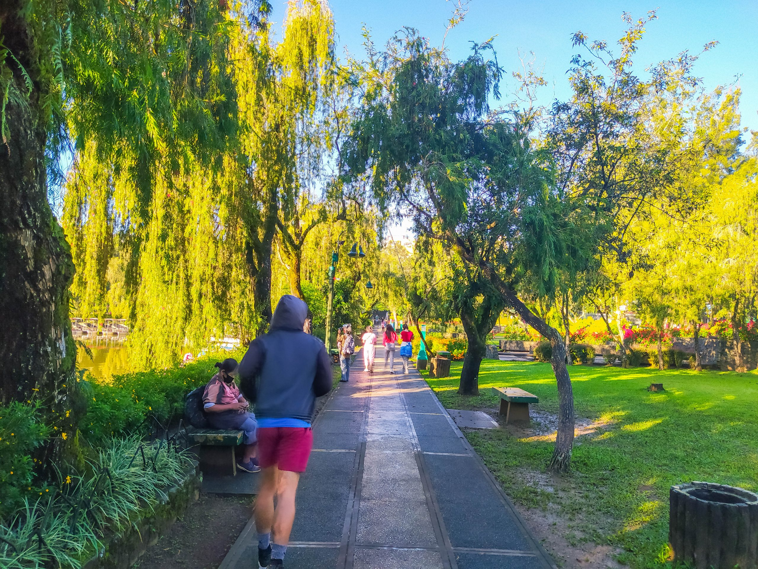 People jogging along a paved pathway lined with grass, plants, and trees