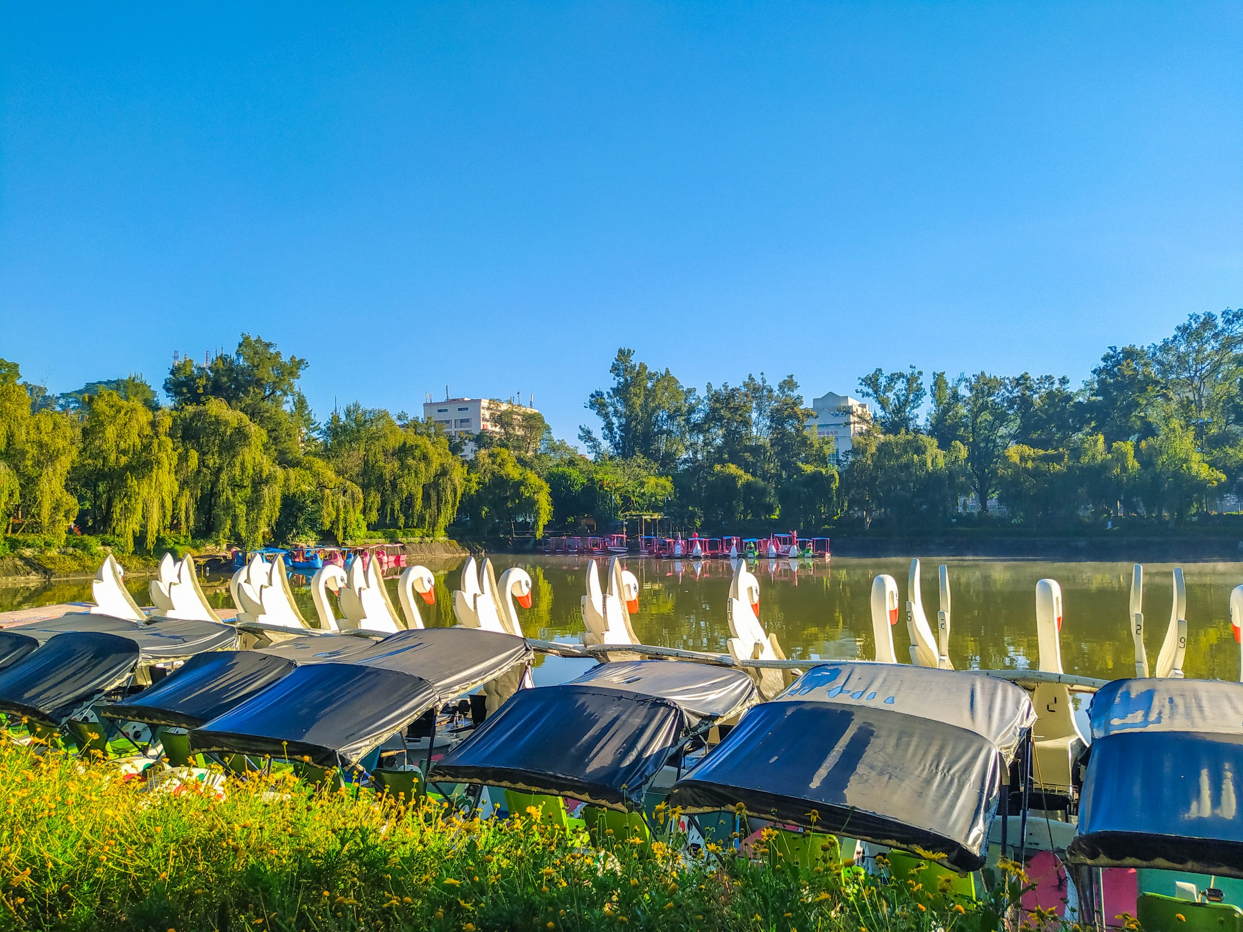 A row of boats moored on the side of the surface of Burnham Lake underneath a blue sky