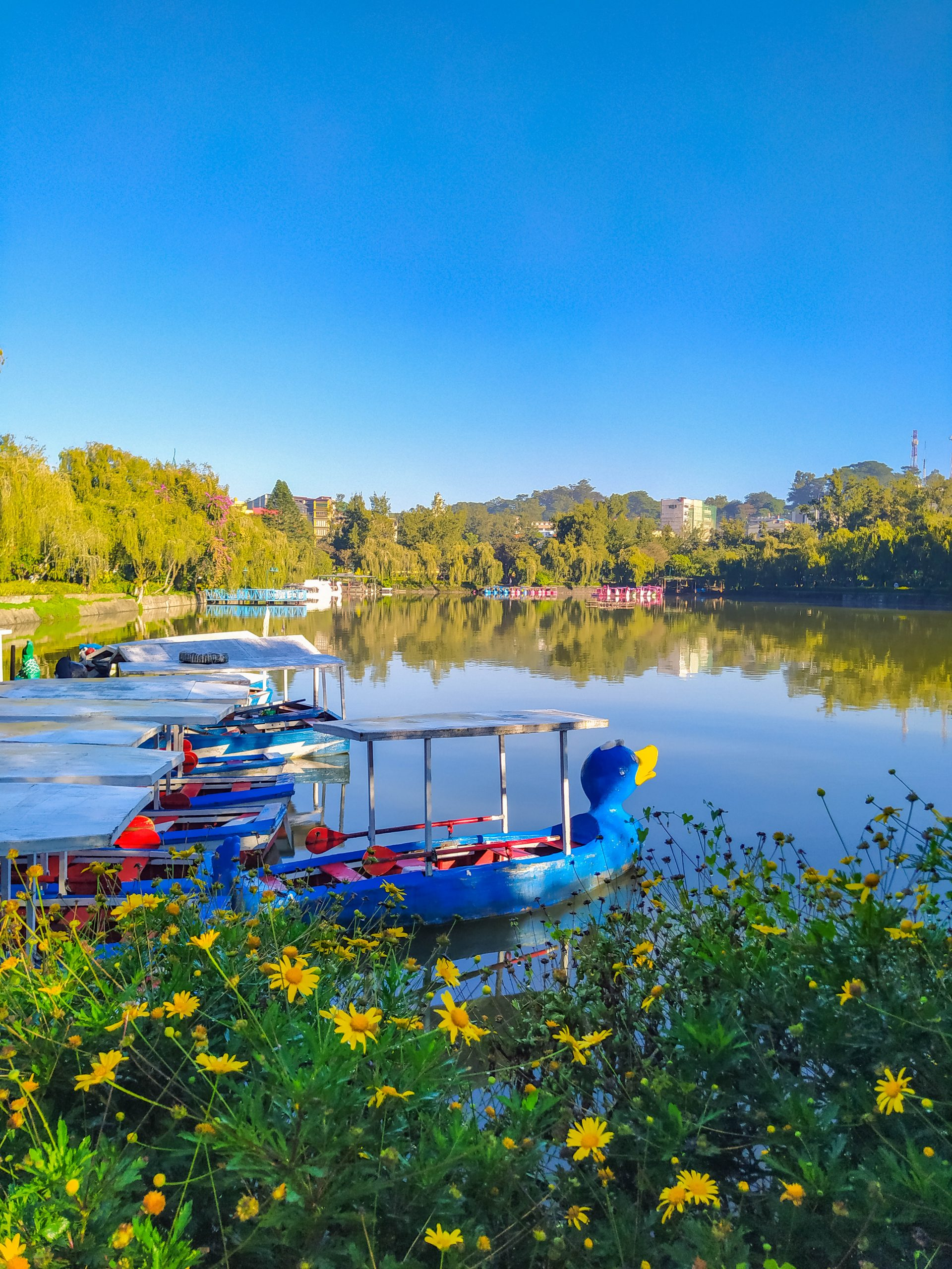 Boats floating on the clear, calm, and mirror-like surface of Burnham Lake underneath the clear, blue morning sky