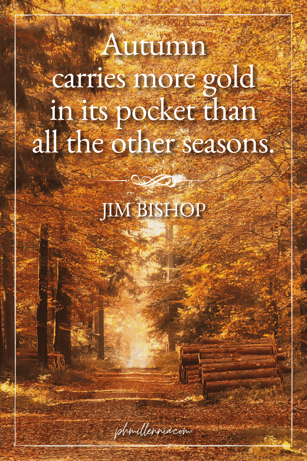 A graphic featuring an autumn quote/fall saying over an image of a pathway through a forest with trees in autumn/fall foliage and colors